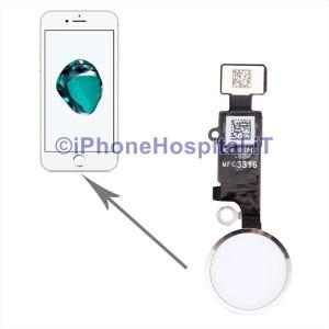 Tasto Home - Flex Cable per iPhone 7 / 7P Assemblato Argento (Silver )