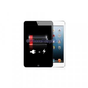 Sostituzione Batteria iPad Mini