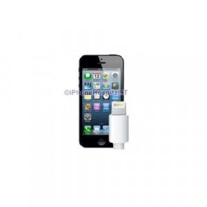 Sostituzione Connettore di Ricarica iPhone 5